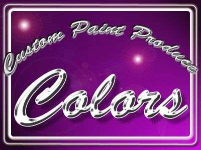 カスタムペイント Colors Webサイトロゴ